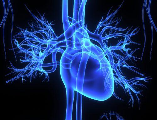 Aspekte ganzheitlicher Kardiologie